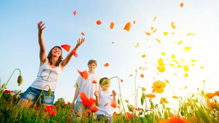 Цвето- и светотерапия